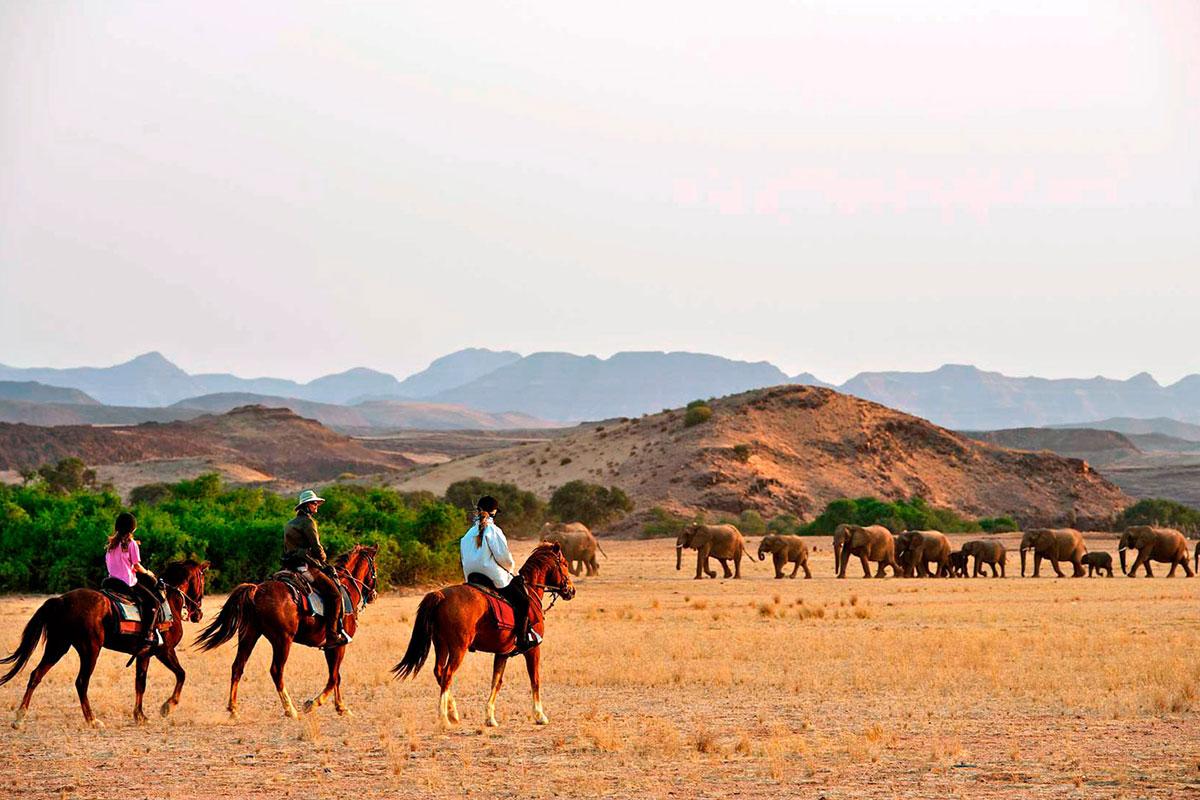 Horseback-Safaris-