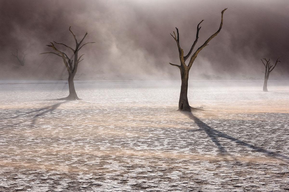 Photography-Safaris